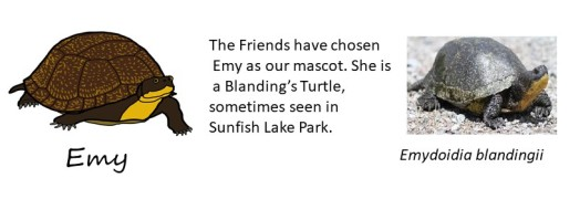 Emy and turtle pic crop jpeg 11-21-17