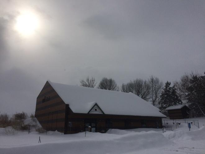 Winter sun 2-12-19